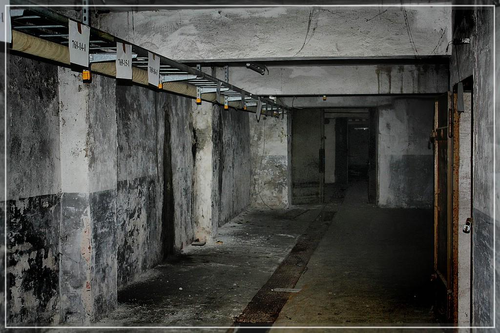 BlackSheep_0659